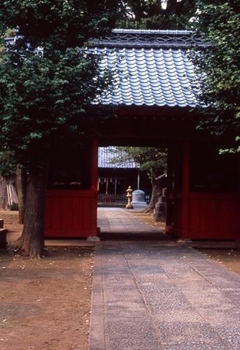 FWmusashinoRG228(1).jpg