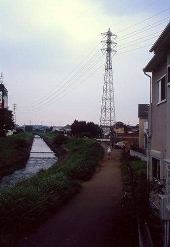 FWmusashinoRG236(1).jpg
