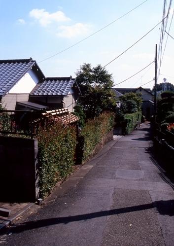 FWmusashinoRG274(1).jpg