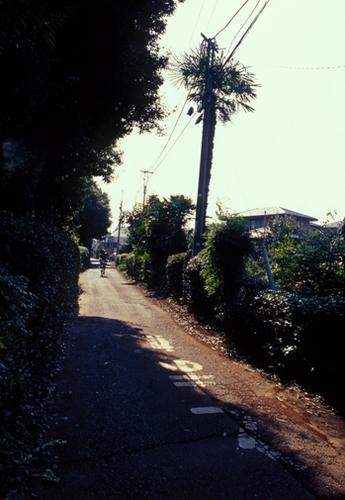 FWmusashinoRG305(1).jpg