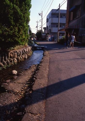 FWmusashinoRG316(1).jpg
