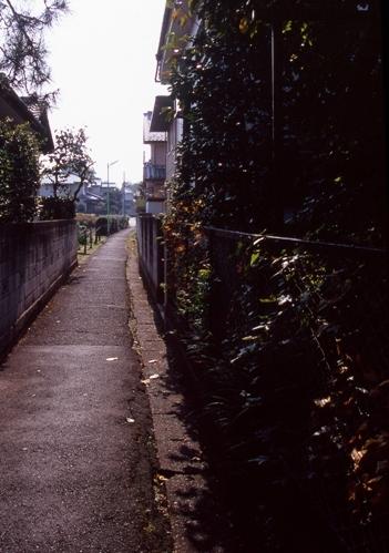 FWmusashinoRG341(1).jpg