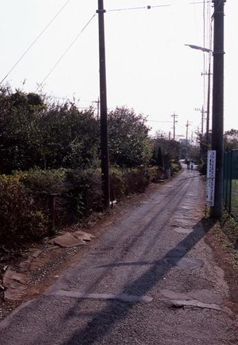 FWmusashinoRG345(1).jpg