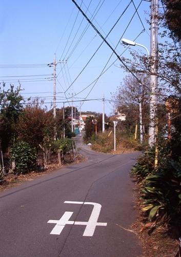 FWmusashinoRG346(1).jpg