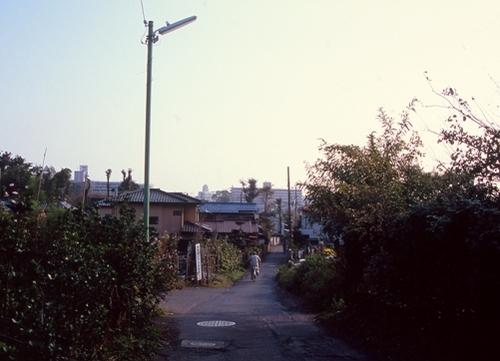 FWmusashinoRG364(1).jpg