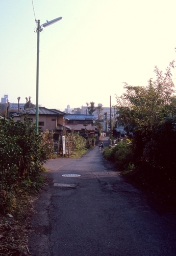FWmusashinoRG365(1).jpg