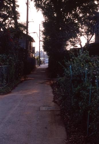 FWmusashinoRG371(1).jpg