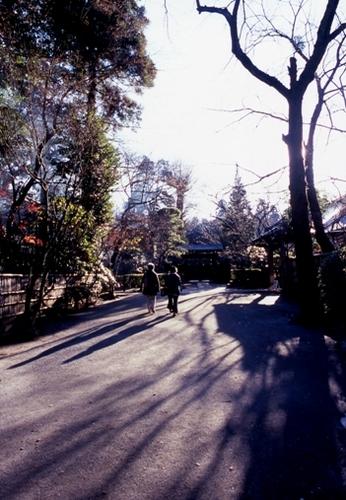 FWmusashinoRG401(1).jpg