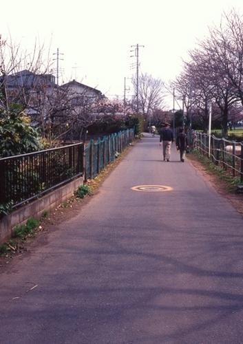 FWmusashinoRG431(1).jpg