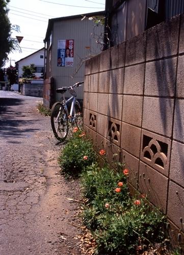 FWmusashinoRG478(1).jpg