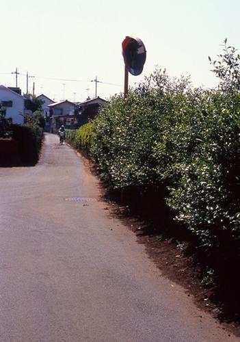 FWmusashinoRG484(1).jpg