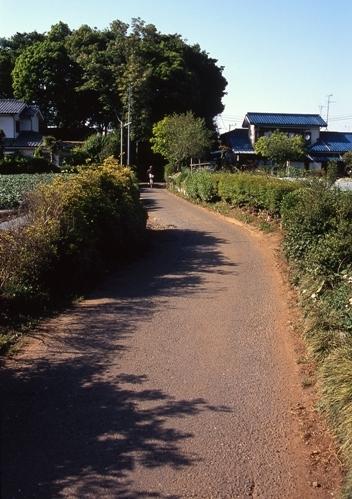 FWmusashinoRG495(1).jpg