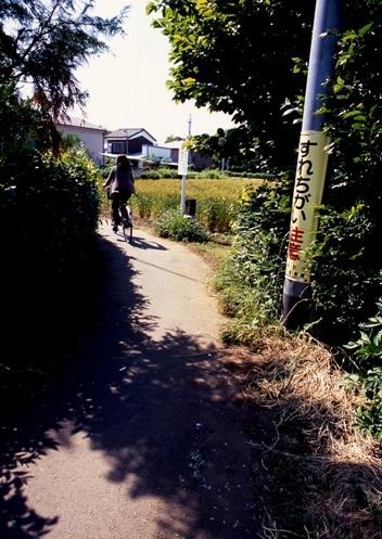 FWmusashinoRG515(1).jpg