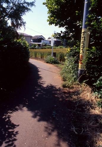 FWmusashinoRG516(1).jpg
