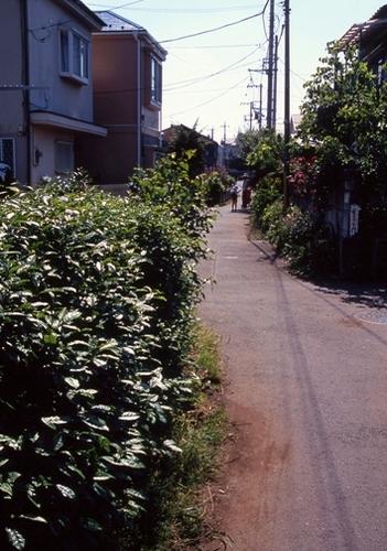 FWmusashinoRG519(2).jpg