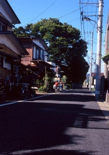 FWmusashinoRG551(1).jpg