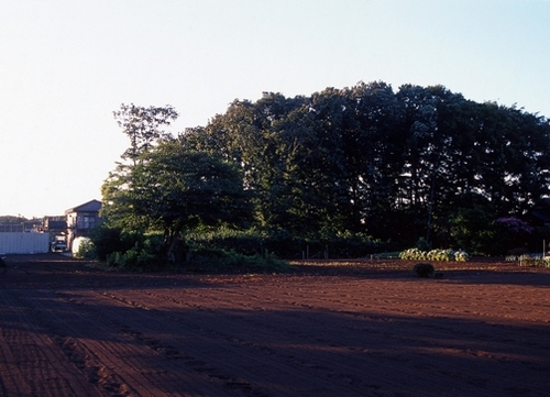 FWmusashinoRG570(1).jpg