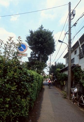 FWmusashinoRG575(1).jpg