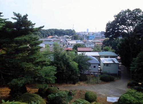 FWmusashinoRG577(1).jpg
