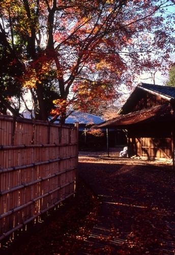 FWmusashinoRG620(1).jpg