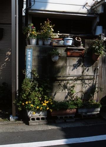 FWmusashinoRG625(1).jpg