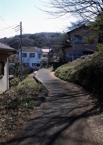FWmusashinoRG648(1).jpg