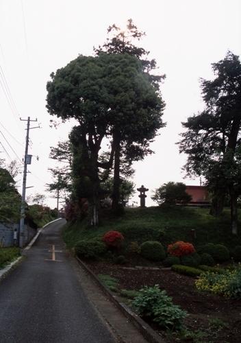 FWmusashinoRG722(1).jpg