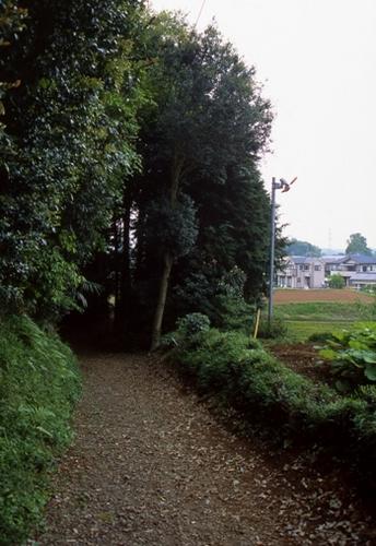 FWmusashinoRG727(1).jpg