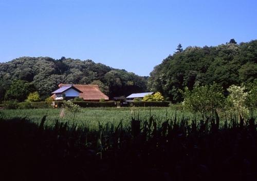 FWmusashinoRG747(1).jpg