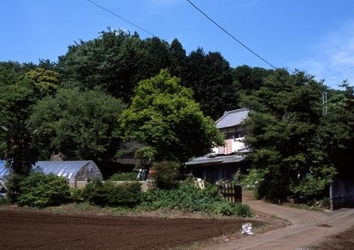 FWmusashinoRG798(1).jpg