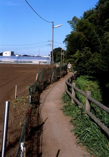 FWmusashinoRG856(1).jpg