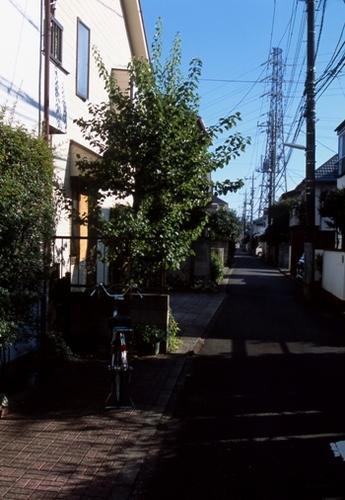 FWmusashinoRG861(1).jpg