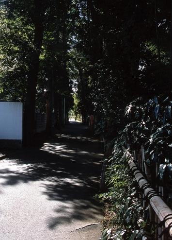 FWmusashinoRG936(1).jpg