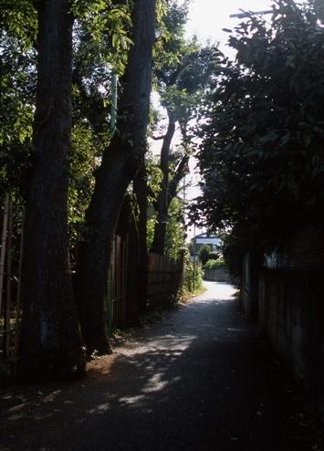 FWmusashinoRG939(1).jpg