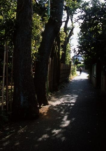 FWmusashinoRG941(1).jpg