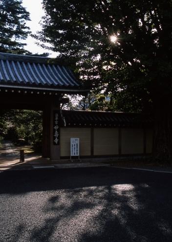 FWmusashinoRG948(1).jpg