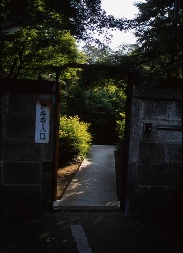 FWmusashinoRG949(1).jpg