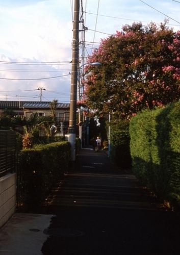 FWmusashinoRG958(1).jpg