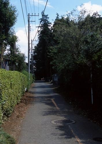 FWmusashinoRG959(1).jpg