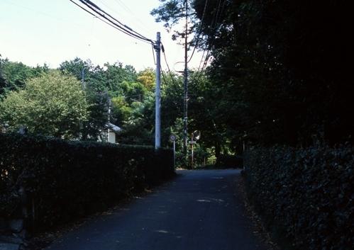 FWmusashinoRG960(1).jpg