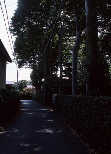 FWmusashinoRG962(1).jpg