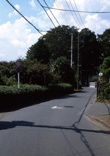 FWmusashinoRG964(1).jpg