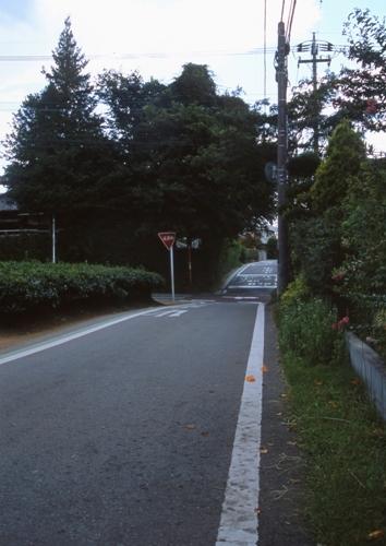 FWmusashinoRG980(1).jpg