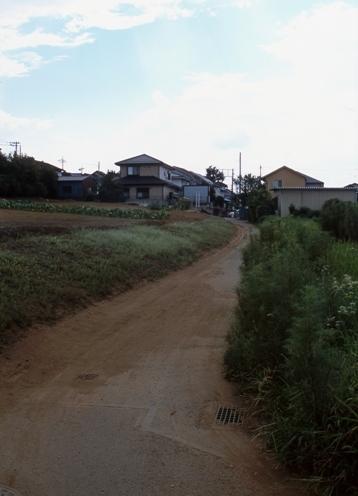 FWmusashinoRG981(1).jpg