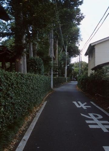 FWmusashinoRG983(1).jpg