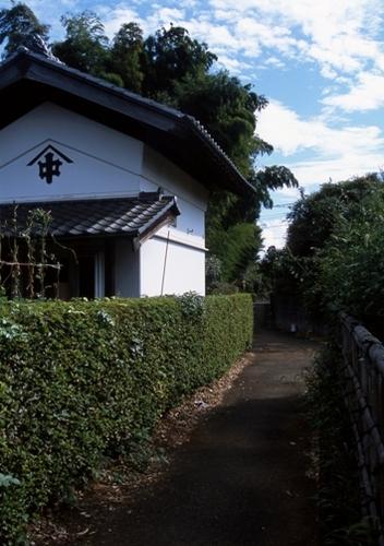 FWmusashinoRG987(1).jpg