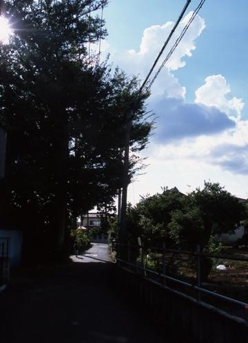 FWmusashinoRG995(1).jpg