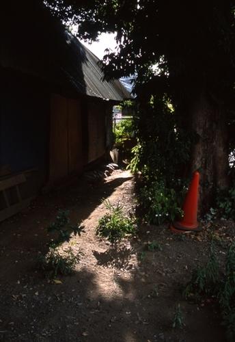 FWmusashinoRG997(1).jpg
