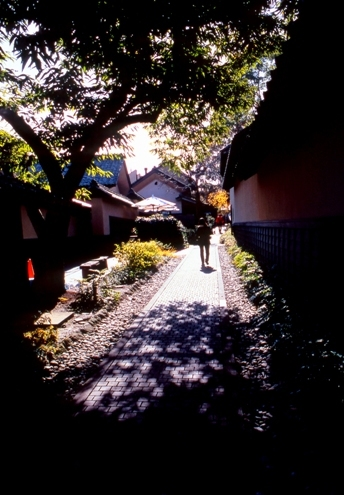FWobuseRG125(1).jpg