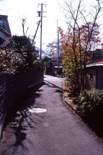 FWobuseRG212(1).jpg
